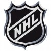 A Half-Assed Guide To A Half-Assed NHL Season