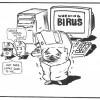 'BIRUS!'